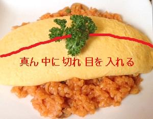 taimeiken4